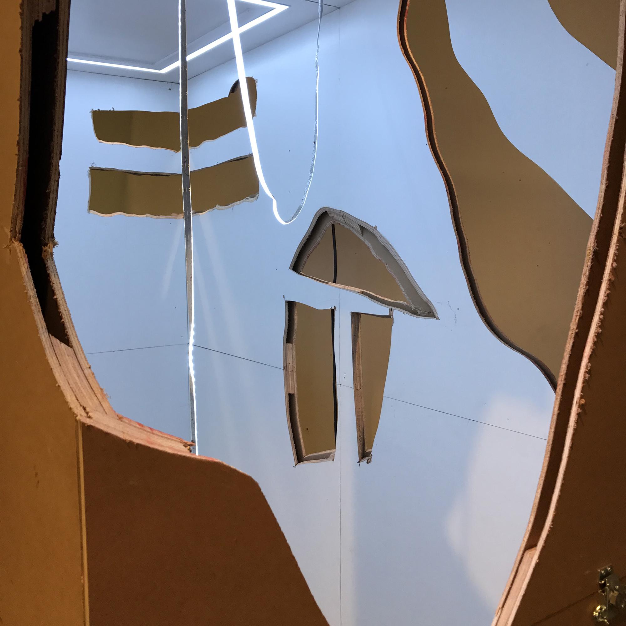 Nathan Sinai Rayman Thesis Image