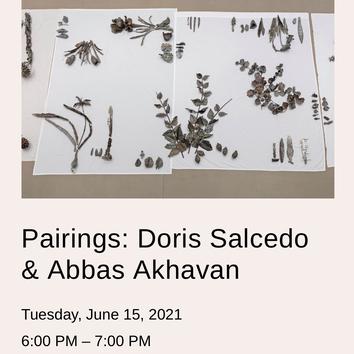 Pairings: Doris Salcedo & Abbas Akhavan